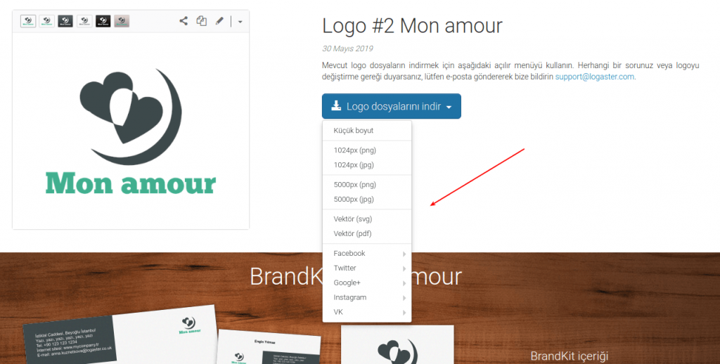 choose logo format to download